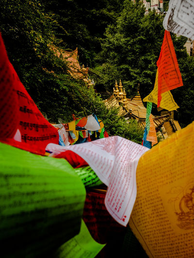 Various flags hanging on tree against temple