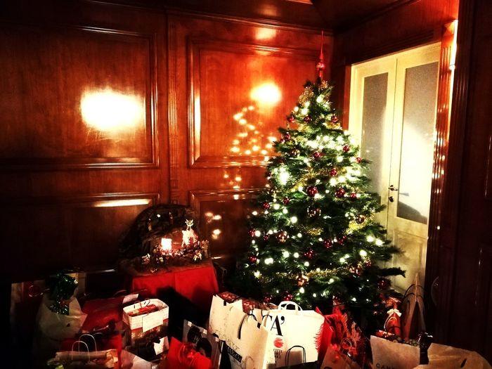 Christmas Decoration Tree Christmas Celebration Christmas Lights christmas tree Tradition Holiday - Event