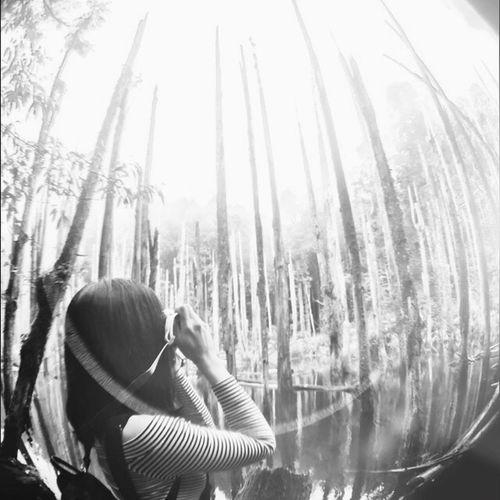 Monochrome 忘憂森林