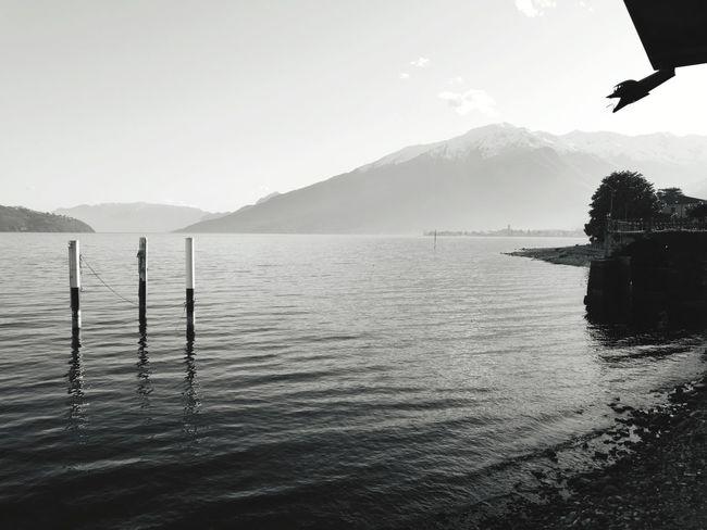 Como Lake Ferry Ferryboat Lakeside Varenna Italy Dervio Domaso Alpi Alps Como Lake Lago Di Como Lario Menaggio Bellagio Gravedona Bellano Water Mountain Lake Silhouette Sky
