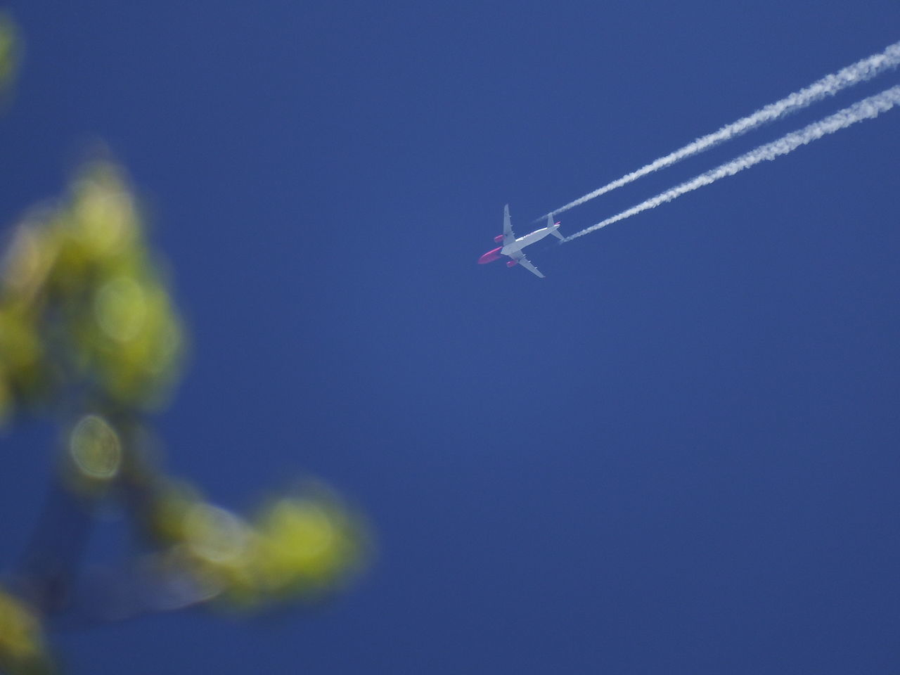 AIRPLANE Leaving Vapor Trail In Sky