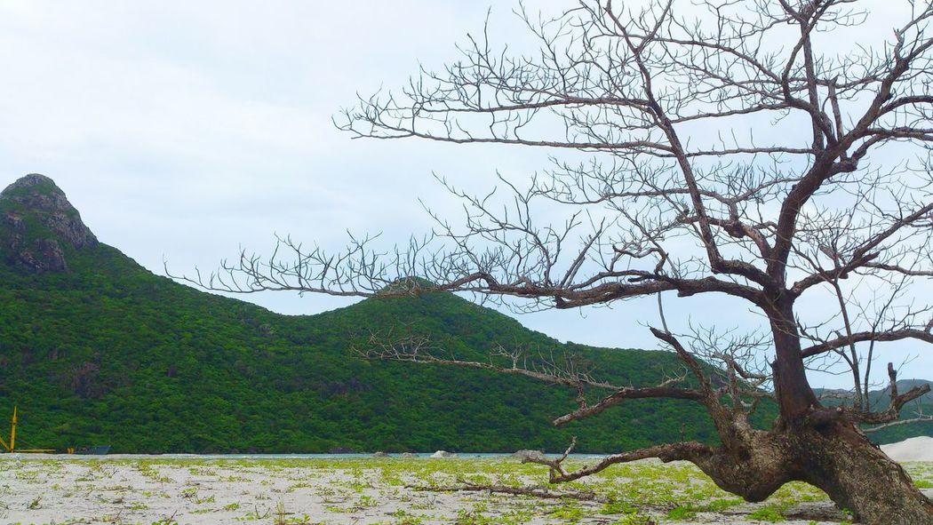 Exploring New Ground Vietnam Picture On The Road Taking Photos Landscape Scenery Shots Hello World Viet Nam Côn Đảo
