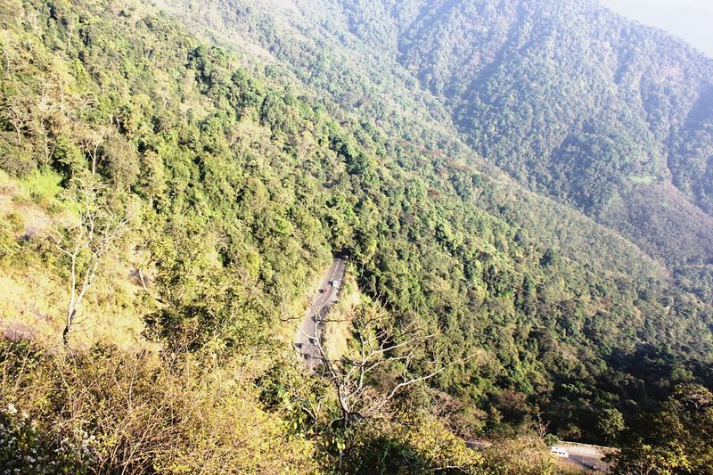 View Wayanad Viewpoint View From View Point Bridge Wayanad Nature Nature_collection Nature Photography Nature Road Road View From Above View From The Top Views Forest Tree Trees Hillstation Hills Hillside Hilltop HillTopView View From Bridge Natural Beauty Natural Green Greenary