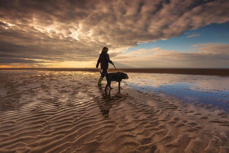 Woman walking dog on beach at sunset