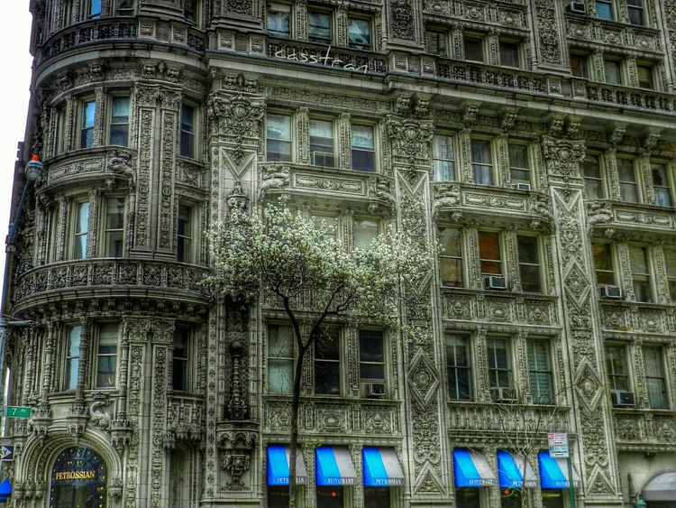Spring is in the air Petrossian New York City Architecture Pantone Colors By GIZMON