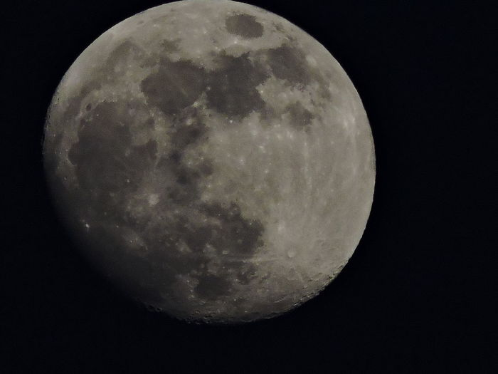 Moon Check This Out