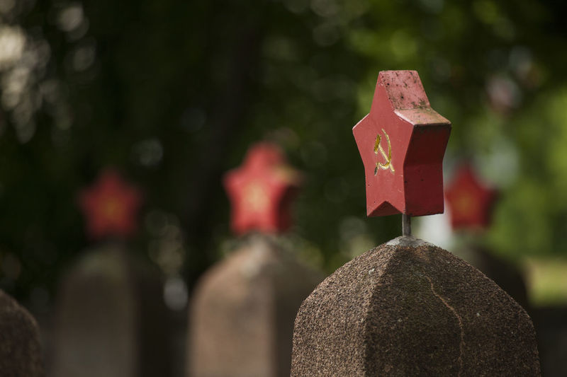 red star with hammer and sickle on gravestones on a soldiers memorial World War 2 Memorial Art And Craft Belief Cemetery Close-up Creativity Day Focus On Foreground Grave Hammer And Sickle Headstones In A Row Human Representation Nature No People Outdoors Plant Red Star Religion Russian Second World War Soldiers' Graves Solid Sovjetunion Spirituality Stone Stone Material Tombstone