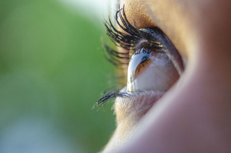 Body Part Contemplation Eye Eyelash Human Face Iris - Eye Looking Looking Away Macro Photography Selective Focus Watch