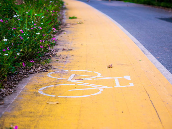 Bike path Road Transportation Direction Sign No People Marking Plant Road Marking Day The Way Forward Symbol High Angle View Nature City Footpath Outdoors Land Vehicle Bicycle Lane Street Flowering Plant