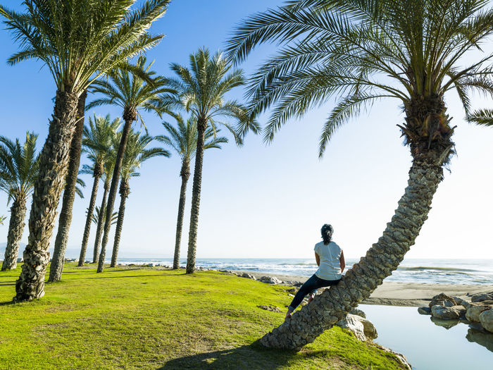 Rear view of man on palm trees against sky