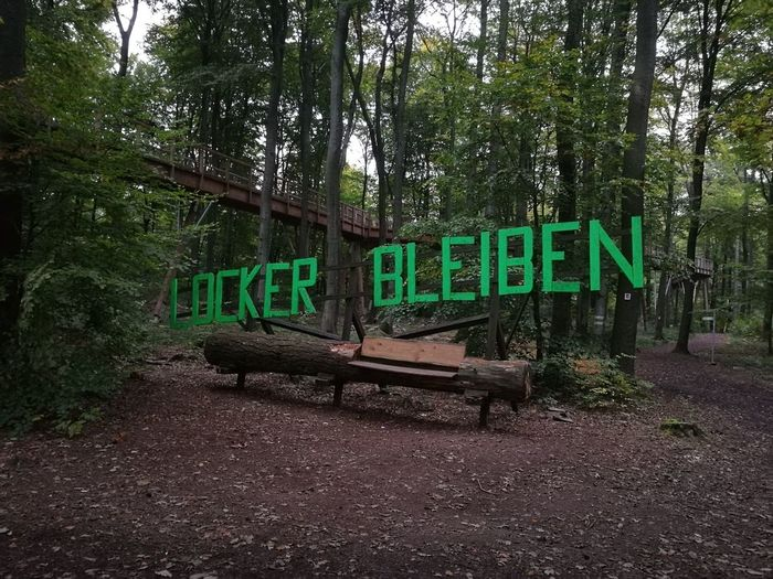 Text Tree Green Color Communication No People Day Outdoors Nature P9photography Deutschland Merzig Sky
