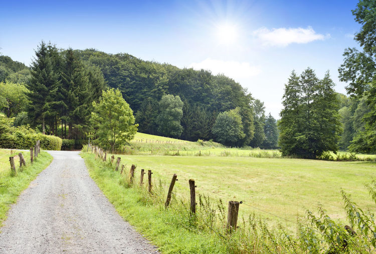 Idyllic footpath or country road through scene. Country Country Road Footpath Path Road Sunlight Trees Beauty In Nature Countryside Day Field Grass Green Color Idyllic Land Landscape Nature No People Outdoors Plant Sky Street Sun Tranquil Scene Tranquility