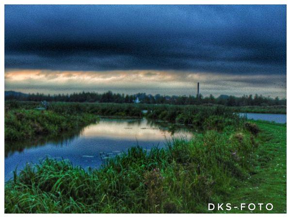 Sweden The True Story Eskilstuna Rural Scene Wind Turbine Field Wind Power Water Sky Grass Landscape Green Color