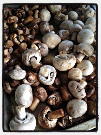 Mushrooms Food Porn