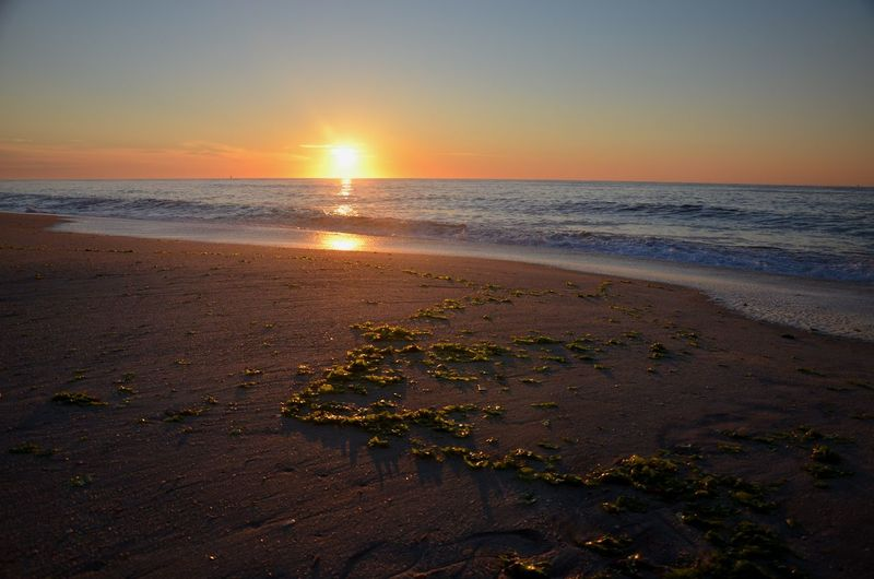 Newjersey Pointpleasant Water Low Tide Sea Wave Sunset Beach Sand Sunlight Sun Horizon Seascape Horizon Over Water Coastline