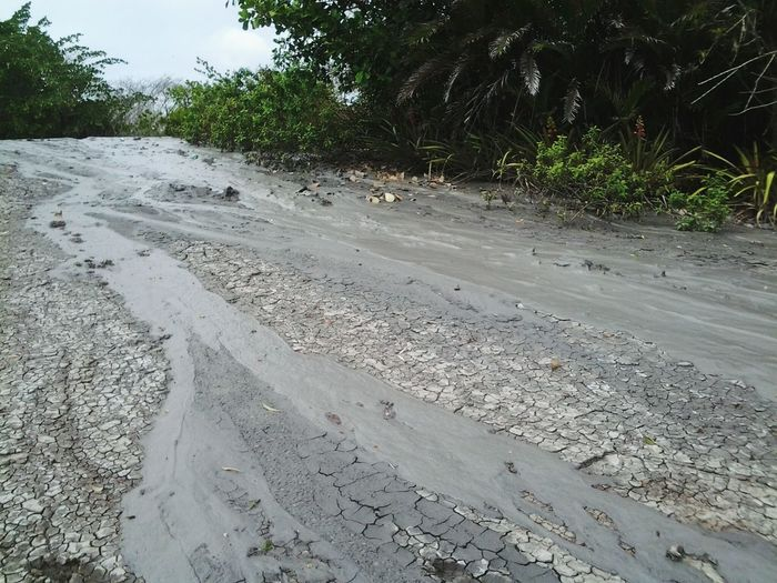 3/4. It just constantly flows down the hill, ever so slowly. Nature On Your Doorstep Mud Volcano Hill Lava Flow Mud Flow Trickle at Penal, Trinidad