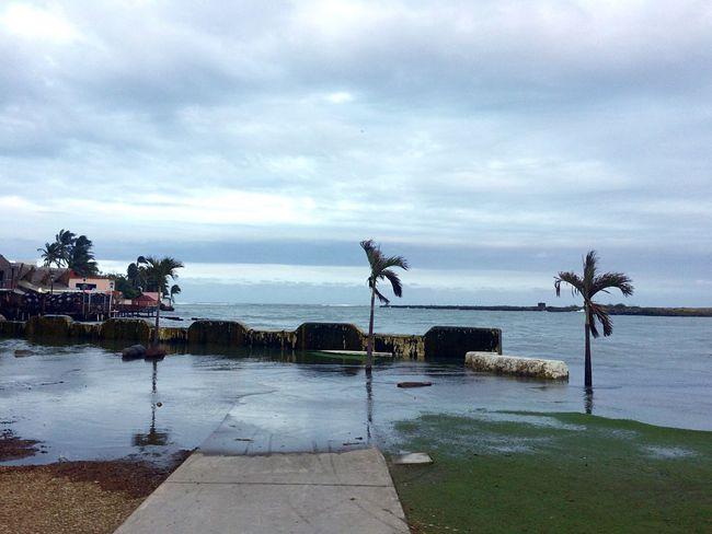 By The Sea Atlantic Ocean Boca Del Río Boca Del Rio Veracruz Veracruz Palm Trees Bad Weather