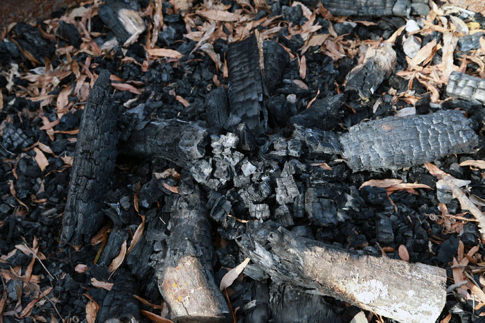Remnants of burnt firewood at a campsite Burnt Wood Campfire Camping Camping Out Forest Fire Remnants Remnants Of History Black Burn Out Burnt Campground Camping Trip Camping Trip! Charred Charred Wood Close-up Day Forest Fires Nature No People Outdoors Outside Remnants Remnants Of The Past Safety Wood - Material