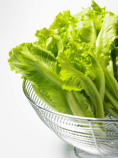 Salad leaf. Lettuce isolated on white background Diet Plant Salad Close-up Food Food And Drink Freshness Green Color Healthy Eating Indoors  Leaf Lettuce No People Nutrition Organic Plant Part Still Life Studio Shot Vegetable Wellbeing White Background