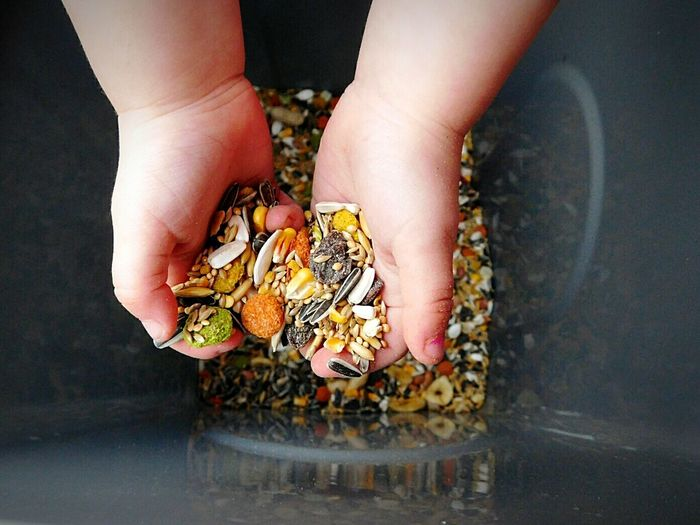 Cropped Image Of Girl Holding Various Seeds Over Container
