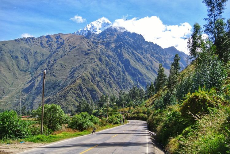 Road amidst plants and mountains against sky