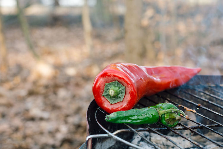 Red and green peppers on a grill Burning Green Hot Red Smoke Spicy Barbecue Charcoal Chili  Close-up Focus On Foreground Food Freshness Grill Healthy Eating Heat Paprika Peppers Ripe Spice Vegetable