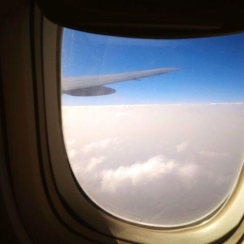 Flying Airplane Window Passenger Boarding Bridge First Eyeem Photo