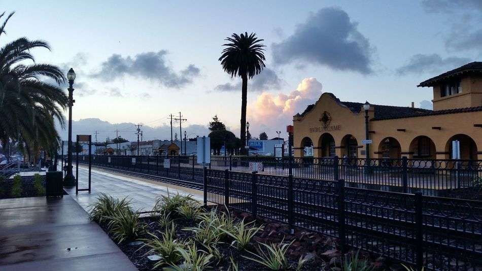 Good start to a new day Architecture Bay Area Beauty In Nature Burlingame Caltrain Cloud - Sky Day Growth Nature No People Outdoors Palm Tree San Francisco Sky Sunrise The Way Forward Train Train Station Train Tracks Tree