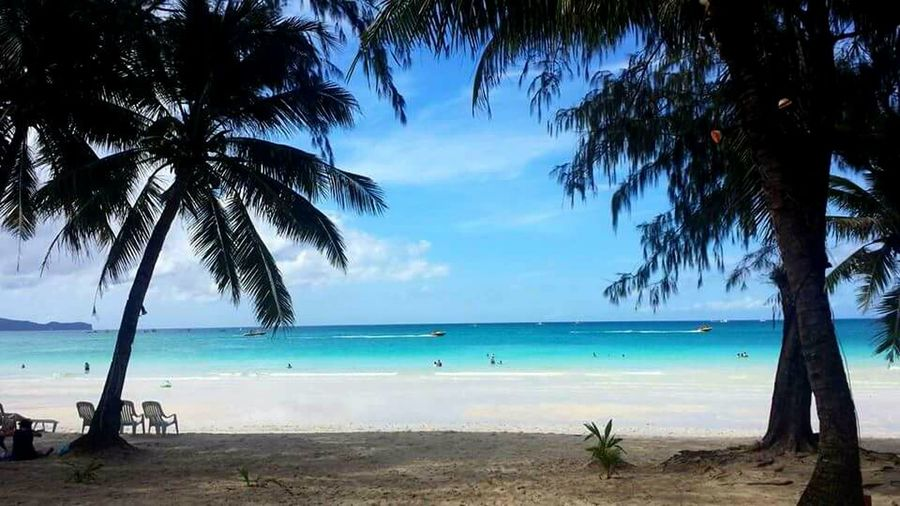 Sea Beach Palm Tree Horizon Over Water Blue Tree Vacations Sand Water Landscape Tourism Scenics Nature Seascape Travel Sky Beauty In Nature Summer Coastline Tropical Climate boracay Philippines