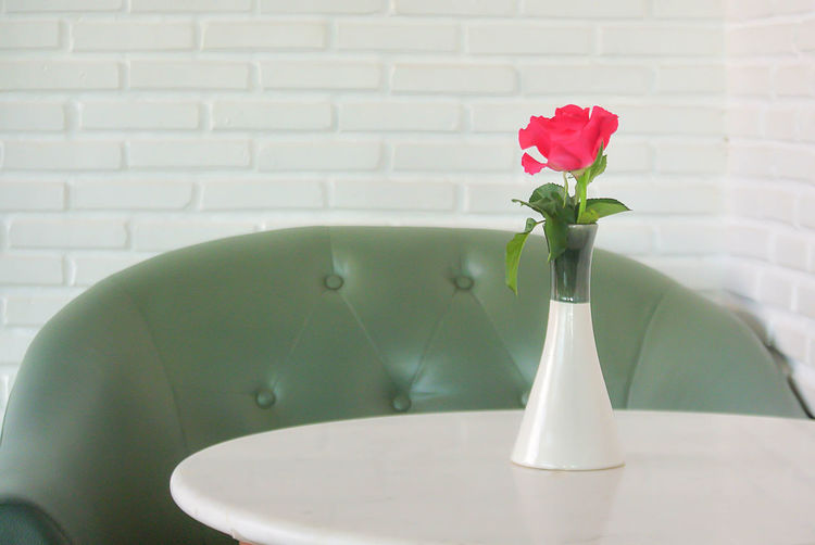 Close-up Flower Flower Head Freshness Growth Indoors  No People Red Vase