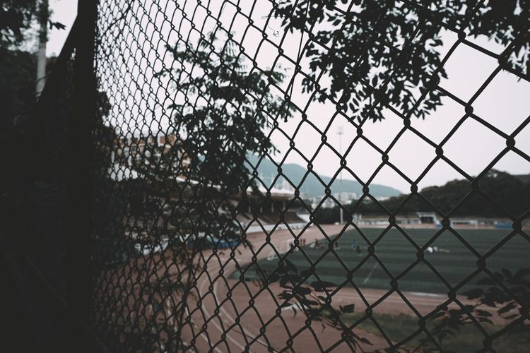 Chainlink fence by trees against sky