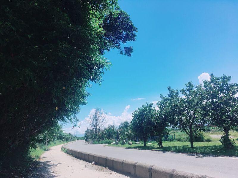 所有的一切都像以前一樣如此美好,大學時期的青春回憶與時光都歷歷在目,好像我們都不曾老去。 The Street Photographer - 2017 EyeEm Awards Nature Sunlight Beauty In Nature Clear Sky Photography Enjoying The Sun Vacation Hello World Travel 2017 Taitung,taiwan