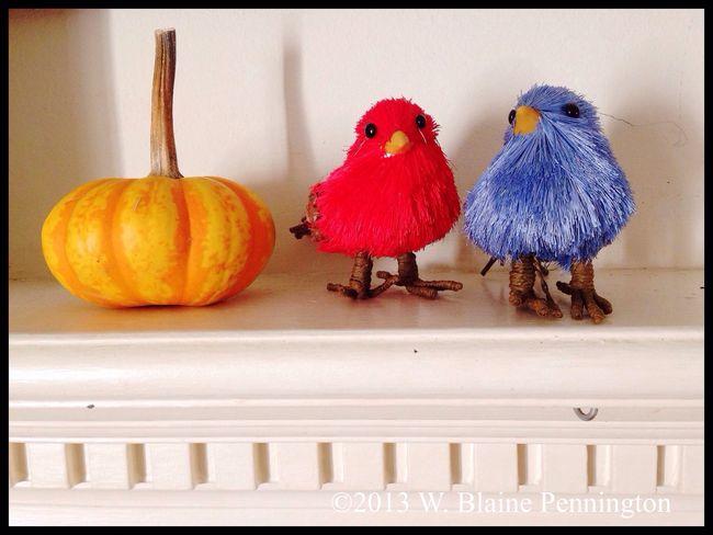 Mantle, this morning Birds Pumpkin