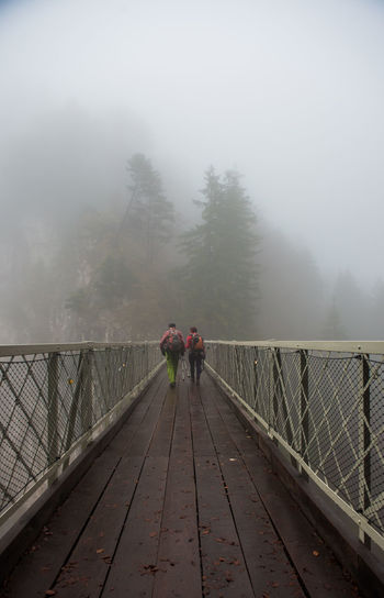 Bridge and Fog in forest Fog Bridge Full Length Bridge - Man Made Structure Tree Footbridge Railing Two People The Way Forward Nature Plant Connection Men Walking Direction People Cold Temperature Day Adult Outdoors Diminishing Perspective