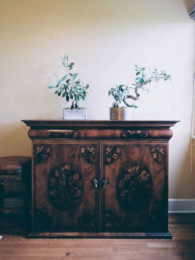 ornate cabinet. Indoors  Plant Furniture Photography Furniture Design Furniture Details Antique Furniture Neatly Arranged Minimalism Light