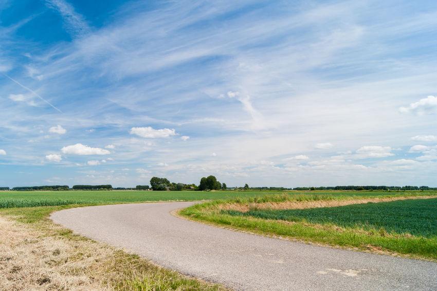 Cloudy sky (locals: Marollenput) Sony A700 EyeEm Market © Getty Images EyeEm Premium Collection Agriculture Cloud - Sky Day Field Grass Landscape Road Scenics The Netherlands Tranquil Scene Zeeland  Zeeuws Vlaanderen