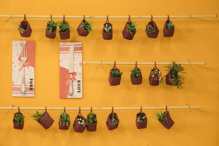 Hanging herbs Hanging Herb In A Row Neat No People Orange Orange Color Outdoors Retail  Spice Store Variation Paint The Town Yellow