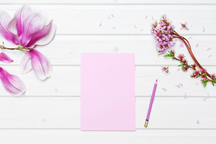 Directly Above Flower Insert Your Text Magnolia Flower Mockup Nature Paper Pencil Pink Color Shipdeck Shipdeck Table Still Life Table Tabletop