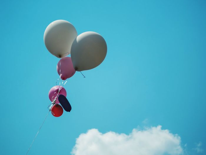 Balloons in the air Balloons Balloon Blue Nature Sky Celebration No People Mid-air Cloud - Sky Group Of Objects Flying Multi Colored Day Helium Balloon Outdoors Event Pink Color Low Angle View Decoration
