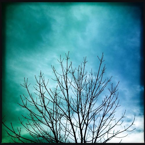 Blue and green Sky