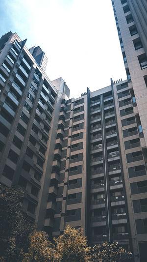 Those buildings