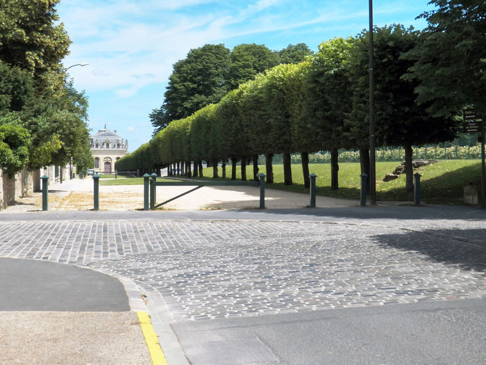 Green Barrier Pavement Curve The Way Forward Alley Outdoor France 🇫🇷 Alignment Of Trees Curve Road Sign Indications Street Beauty City Tree Park - Man Made Space Sky