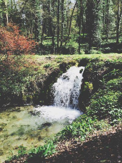 Wiltshire waterfalls Wiltshire England