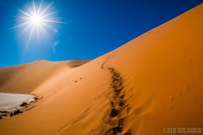 No Rain In Sight Namibia Dunes Sand Dunes Namib Desert EyeEm Selects Sand Desert Blue Sunlight Sand Dune Arid Climate Nature Landscape Outdoors Clear Sky Tranquility Beauty In Nature Day No People Scenics Sky