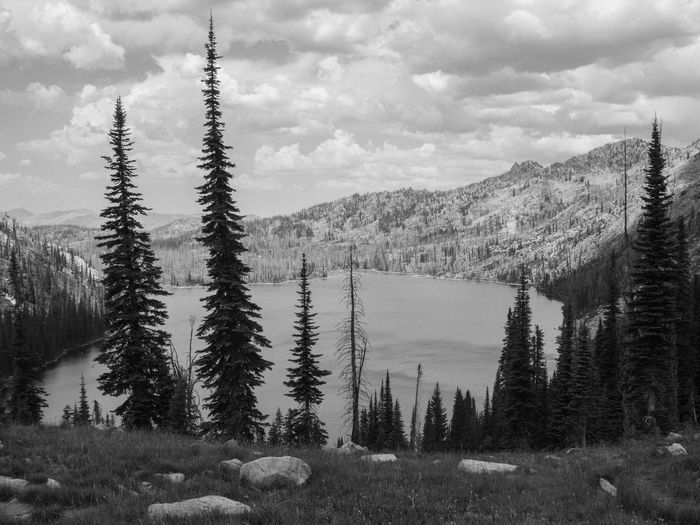 B/w Cloudy Idyllic Landscape Mountain Mountain Range Outdoors Overcast Scenics Sky Tranquil Scene Tree