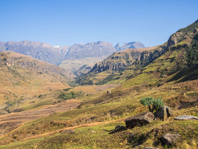 Drakensberg, South Africa Drakensburg Mountains, South Africa, Mountain Hiking Beauty In Nature Clear Sky Day Drakensberg Landscape Mountain Mountain Range Nature No People Outdoors Scenics Sky Tranquil Scene Tranquility