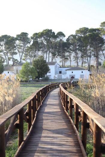 View of footbridge along plants