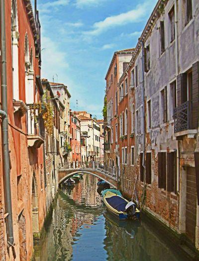 Venice Canals Venicelife Venice