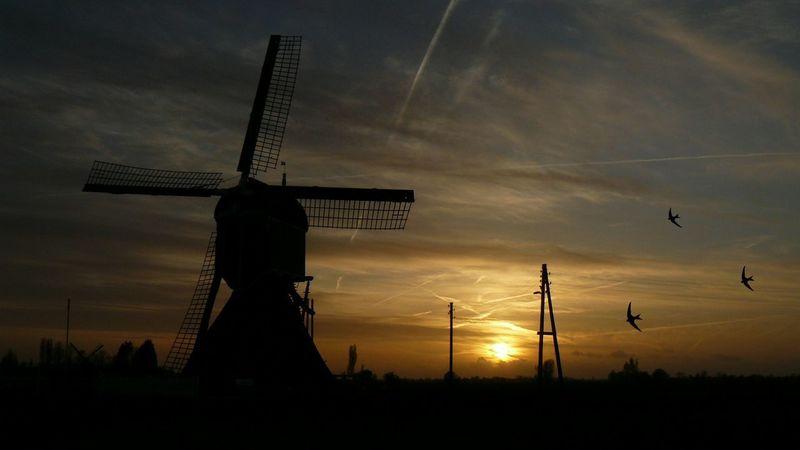 Dutch Windmill Windmill Traditional Windmill Historical Monuments