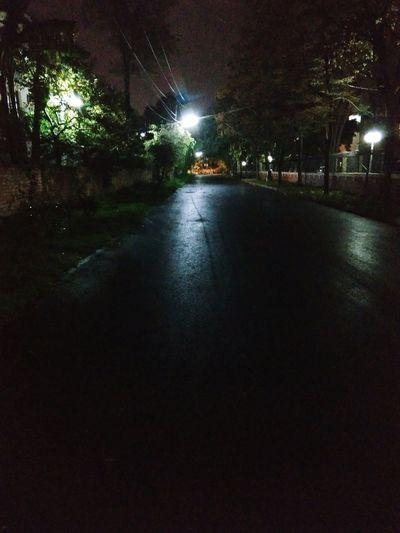 Illuminated Reflection Rain Night Tree Wet Water No People City Outdoors Nature Sky